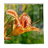 ZLU Blooming-Flower-Orange-Lilium-bulbiferum-Plant Single-Sided Printing Shower Curtain with 12 Hooks for Bathroom Decor and Daily Use