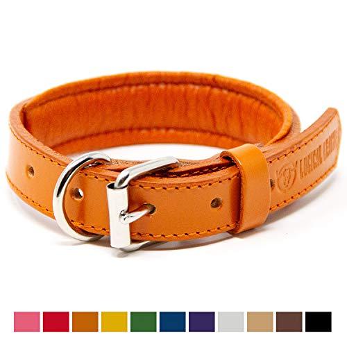 (Logical Leather Padded Dog Collar - Best Full Grain Heavy Duty Genuine Leather Collar - Orange - Small)