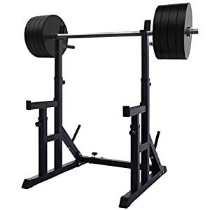 Debonla Adjustable Squat Rack, Multi-Function Barbell Rack, Dipping Station Barbell Rack Max Load 550Lbs for Home Gym Fitness Weight Lifting Bench Press