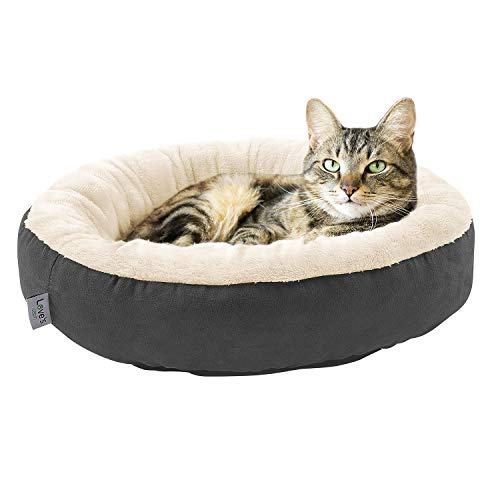 Love's cabin Round Donut Cat and Dog Cushion Bed, 20in Pet Bed For Cats or Small Dogs, Anti-Slip & Water-Resistant Bottom, Super Soft Durable Fabric Pet Supplies, Machine Washable Luxury Cat & Dog Bed