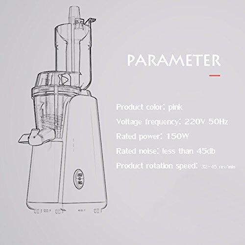DULPLAY Large Diameter Juicer Juice Extractor,Bpa Free Premium Food Grade Stainless Steel Dual Speed Setting Juicer Machine,Bpa Free-Pink by DULPLAY (Image #7)