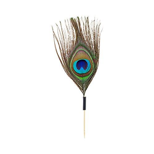 Peacock Eye Skewer, Peacock Feather Eye Pick - 4'', Natural - 500ct Box - Restaurantware by Restaurantware (Image #1)