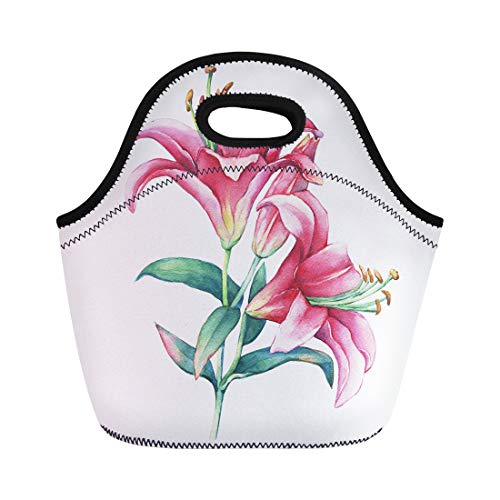 Lilly Branch - Semtomn Neoprene Lunch Tote Bag Purple Lilly Branch Pink Lilies Flower Watercolor Painting Drawing Reusable Cooler Bags Insulated Thermal Picnic Handbag for Travel,School,Outdoors,Work