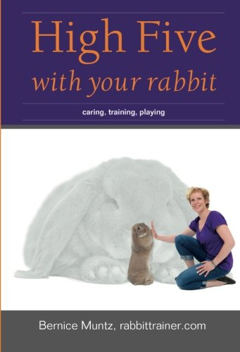 High Five with your rabbit: caring, training, playing