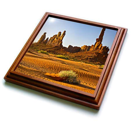 3dRose Danita Delimont - Arizona - USA, Arizona. Monument Valley, Totem - 8x8 Trivet with 6x6 ceramic tile (trv_314551_1) - Monument Valley Usa Framed