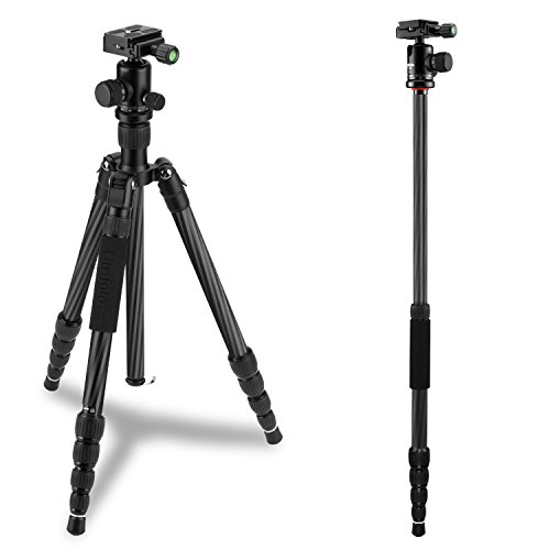 "Utrifoto Carbon Fiber Tripod, 61"" Compact & Lightweight Travel Tripod with Ball Head for DSLR & Mirrorless Cameras, payload 13.22Lb, Weigh only 2.42Lb by Utrifoto"