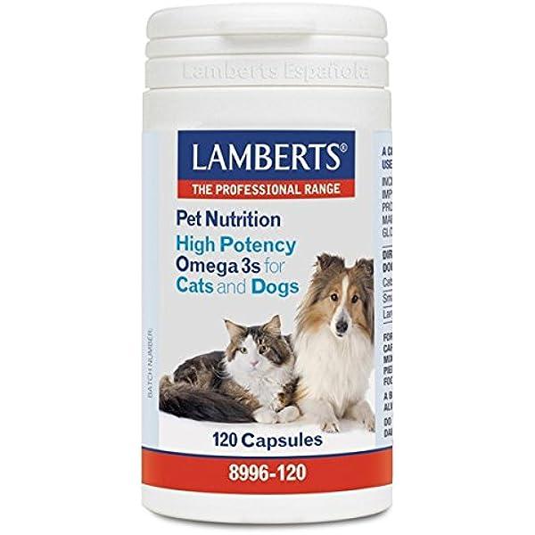 Lamberts 8996-120 Pet nutrition (omega 3 alta potencia para gatos y perros) - 120 Cápsulas: Amazon.es: Salud y cuidado personal