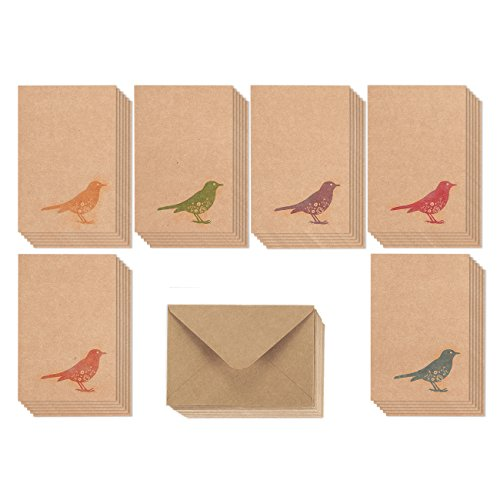 36 Pack All Occasion Kraft Bird Design Greeting Cards, 6 Unique Fashionable Rainbow Style Designs, Bulk Box Set Note Cards Variety Assortment, Envelopes Included