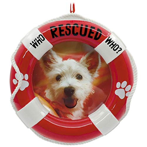Hallmark Pet Adoption Picture Frame Ornament Pets