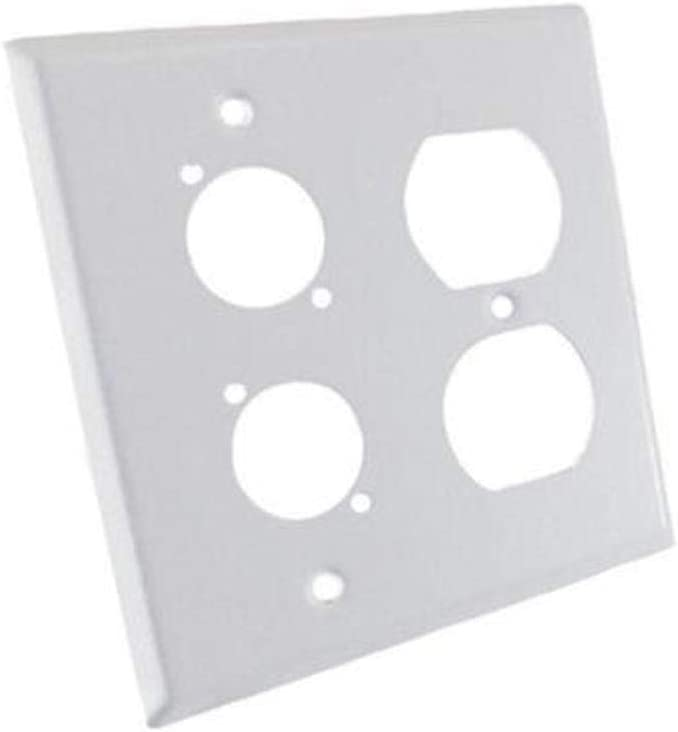 usbargainsound ProCraft Stainless Steel White 2 Gang Wall Plate//AC Duplex 2 XLR D Style Hole