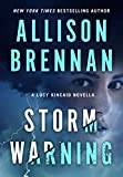 Kindle Store : Storm Warning: A Lucy Kincaid Novella (Lucy Kincaid Novels)