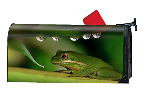 - Michael Trollpoe Animal White Lipped Tree Frogs Magnetic Mailbox Cover, Decorative Garden Outdoor Customized Mailbox Wrap Standard