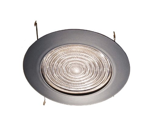 6 Inches Fresnel Lens Shower Trim for Recessed Light-(black)-fits Halo/juno