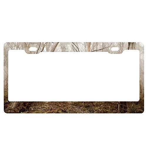 ASLGlicenseplateframeFG Ghost Trough Trees in Mysterious Forest with Fog on Halloween License Plate Frame Designed Decorative Metal Car License Plate Auto Tag ()