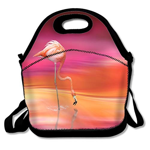Hipster Portable Lunchbox Handbag for Men Women Adult Kids Flamingo Pattern