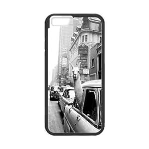 """Alpaca iPhone6 Plus 5.5"""" Hard Back Case, Alpaca Custom Cover Case, iPhone6 Plus 5.5"""" DIY Case"""
