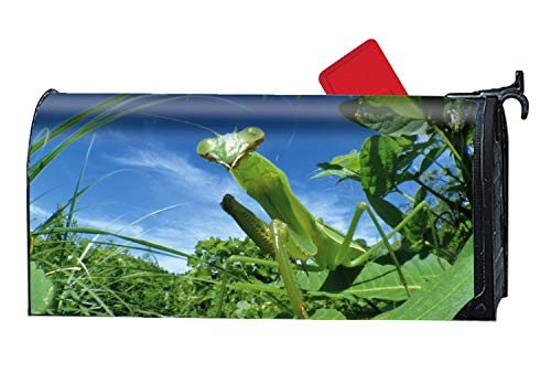 Animal Praying Mantis Fall Glory Floral Magnetic Mailbox Cover Sunflowers Pumpkins
