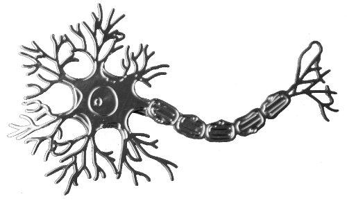 MALSA Neuron Ornament