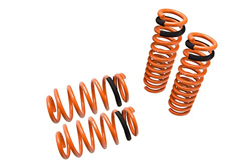 09 dodge charger lowering springs - 1