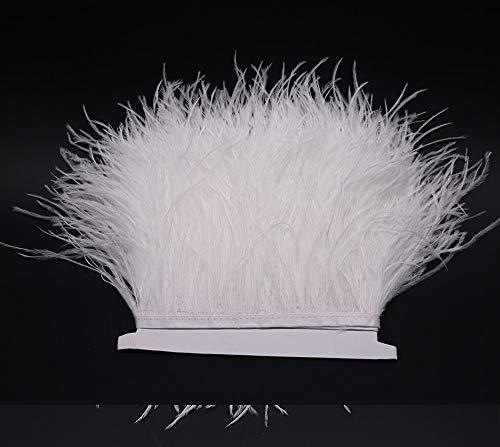 Cushy 5 Meter Lot Hohe Qualität Naturstrauß Piuma Piuma Piuma Höhe 13-15 cm für das Kleid von Te Dekoration Nuziale CGoldna  Farbe O1 B07LH3RLRY | Qualität und Verbraucher an erster Stelle  | Quality First  | Online Shop  aa0db4