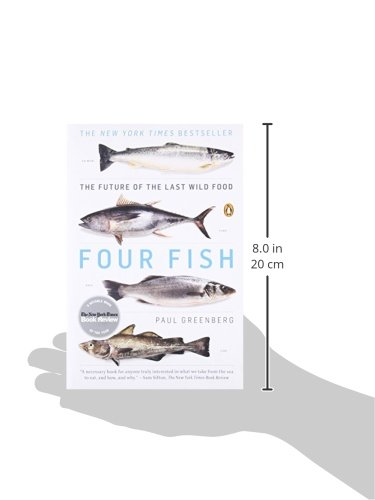 fish catch the energy release the potential pdf