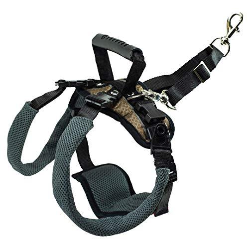 PetSafe Arnés de soporte trasero CareLift - Elevación con un asa y una correa para el hombro - Para perros discapacitados o ancianos - Material transpirable y cómodo - Ajuste fácil - Perro mediano