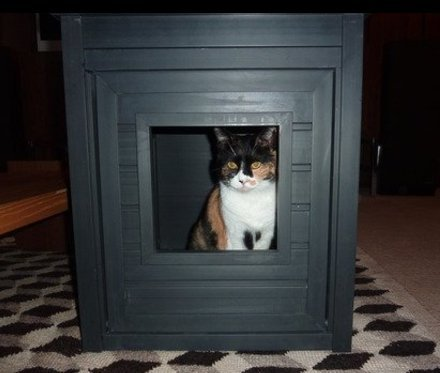 Big Cat Litter Box Multi Adult Indoor & Outdoor Fresh Large Furniture Cabinet & EBOOK. by CENTER