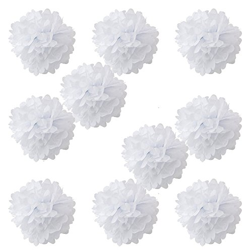 WYZworks Set of 10 - WHITE 8