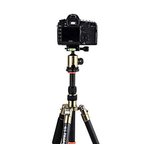 カメラ三脚 Triopo GT-2505x8.C 調節可能ポータブルカーボンファイバー三脚 B-1アルミニウムボールヘッド付き Canon Nikon Sony DSLRカメラ用 (SKU : S-DCA-0419C)   B07L4M734N