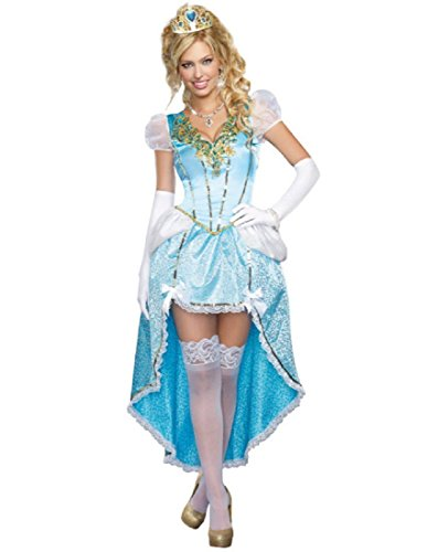 Dreamgirl Women's Plus-Size Fairytale Ball Gown Costume, Blue,