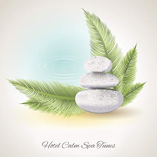 (Hotel Calm Spa Tunes - Music for Massage, Regeneration of Vitality and Renewal of the Body, Relaxation and Stress Relief)