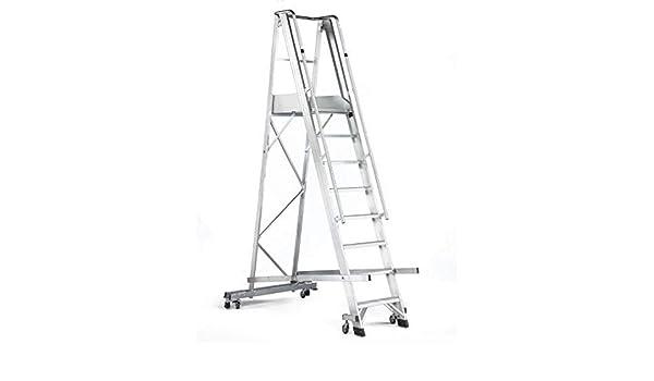 Disset Odiseo PDL0278 Escalera en aluminio para almacenes OSA MAYOR Plataforma de 530x670 mm. 11 peldaños de 100 mm.: Amazon.es: Industria, empresas y ciencia