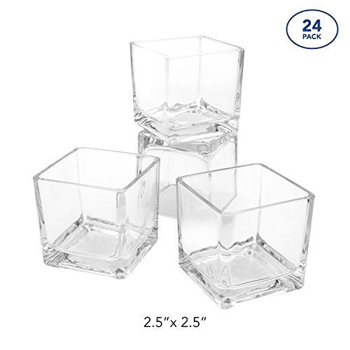 Royal Imports Flower Glass Vase Decorative Centerpiece Home Wedding Clear Cube Shape, 2.5''x2.5''x2.5'', Set of 24 by Royal Imports