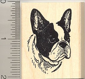 Boston Terrier Dog Face Rubber Stamp - Wood Mounted