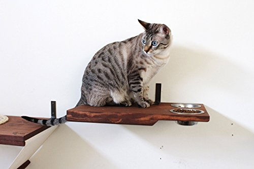Dog Proof Cat Feeder - CatastrophiCreations Cat Dining Table Handcrafted Wall-Mounted Feeder Shelf