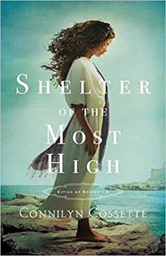 Image result for shelter of the most high book cover