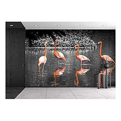 Group of Flamingo Bird in Lake - Removable Wall Mural | Self-Adhesive Large Wallpaper - 100x144 inches