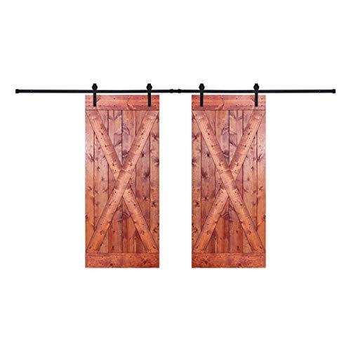 Paneled Wood Painted Double Barn Door D2X Series (Set of 2)