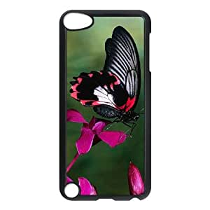 Butterfly CUSTOM Case Cover for iPod Touch 5 LMc-90609 at LaiMc