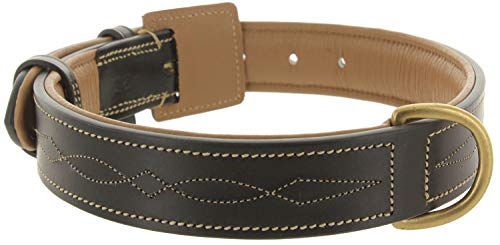 Viosi Leather Padded Dog Collar - Made of Genuine Kingston Luxury Leather [Large, Black Embroidered]
