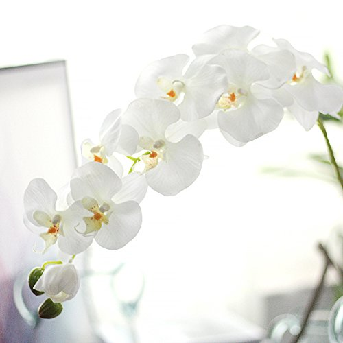 Miracliy 1 Piece Artificial Butterfly Orchid Flower Artificial Flower Plant for Home Decoration, (White Orchid Stems)