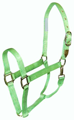 Hamilton Deluxe 1-Inch Nylon Horse Halter with Snap, Lime - Halter Horse Deluxe
