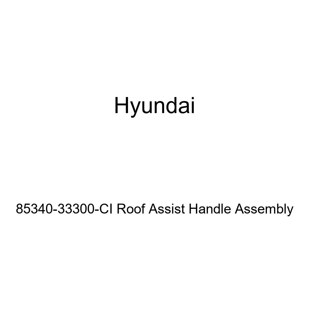 Genuine Hyundai 85340-33300-CI Roof Assist Handle Assembly