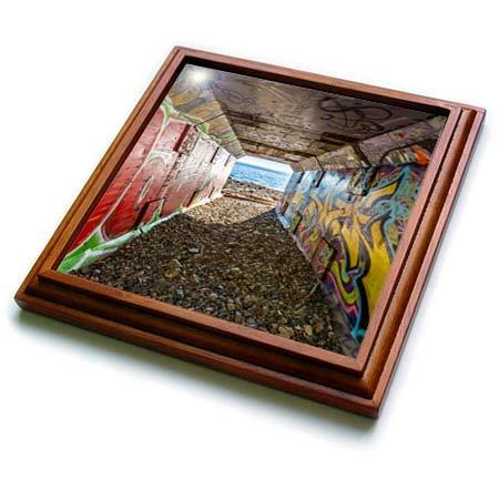 (3dRose Elysium Photography - Landscape - Graffiti on rail tunnel, 1001 Steps, Surrey, British Columbia - 8x8 Trivet with 6x6 ceramic tile (trv_289564_1))