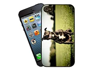 Eclipse Gift Ideas Staffordshire Bull Terrier Phone Case, Design 7 - For Apple iPhone 4 / 4s - Cover
