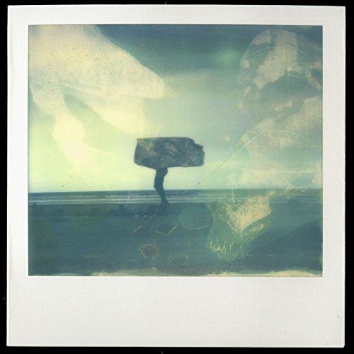 Polaroïd - France Polaroid