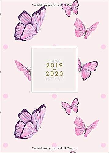Agenda 2019 2020 Semainier: Agenda mi-année de Juillet 2019 ...