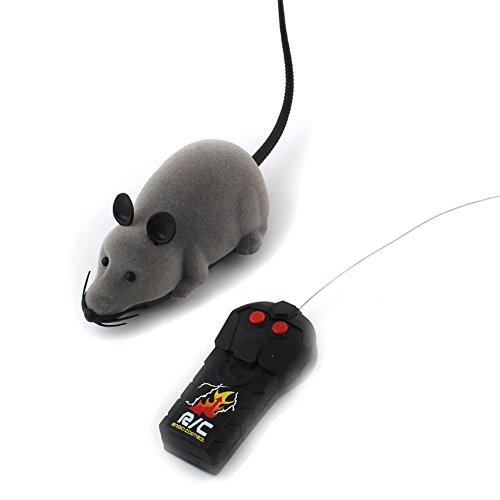 Dog Cat Rat - 4