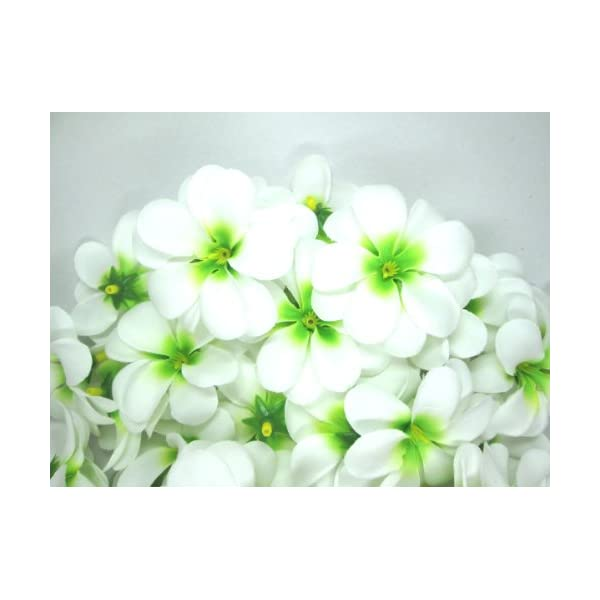 "(100) White Green Hawaiian Plumeria Frangipani Silk Flower Heads - 3"" - Artificial Flowers Head Fabric Floral Supplies Wholesale Lot for Wedding Flowers Accessories Make Bridal Hair Clips Headbands Dress"