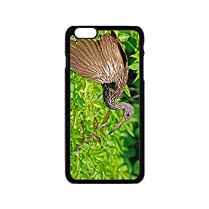 Stork Bird Hight Quality Plastic Case for Iphone 6